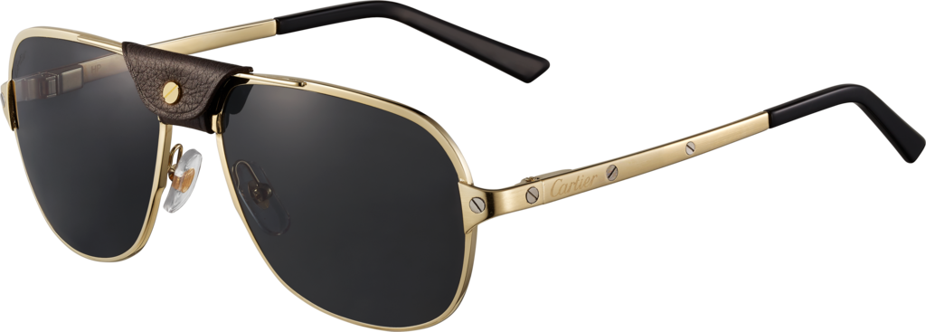 Santos de Cartier sunglassesSmooth champagne golden-finish metal, gray polarized lenses with golden flash